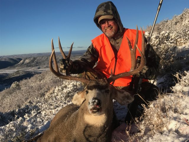 Mule Deer-Colorado Hunting-QRS